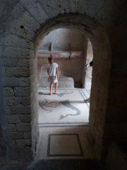 Фото Мозаичный пол в термах Геркуланум